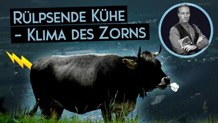 Rülpsende Kühe – Klima des Zorns (von Ivo Sasek)