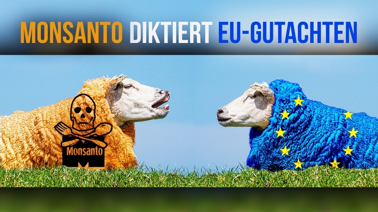 Monsanto diktiert EU-Gutachten